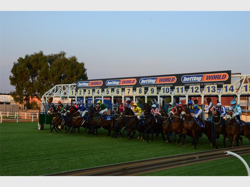 Turffontein horse racing betting for dummies horse betting app